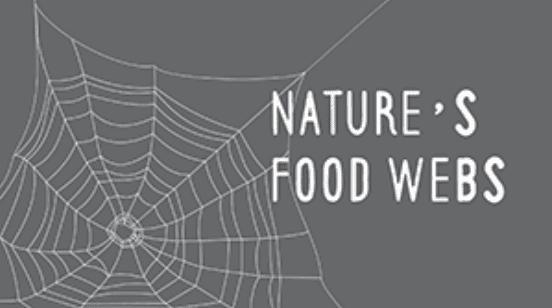 Year 7 - Food Webs Presentation
