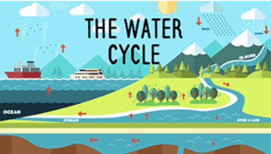 Year 7 - Water Cycle Presentation